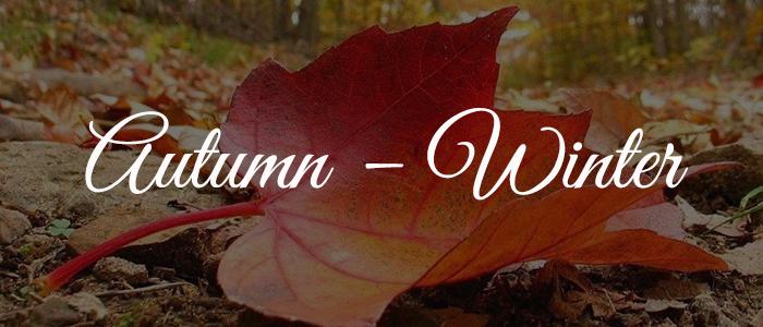 Autumn–Winter